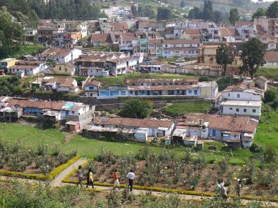 Ooty suburb seen from the rose garden