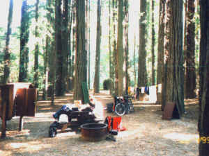 Redwood campground, 14.2k