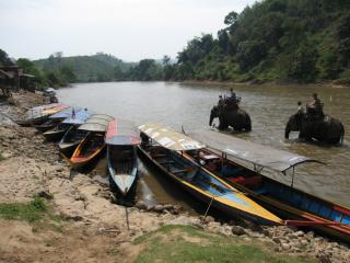 Boats and elephants