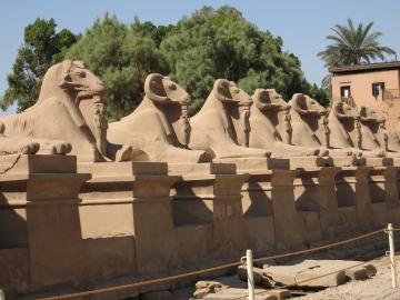 Row of sphinxes at the temple of Karnak