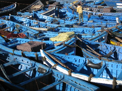 Fishing boats in Essaouira's harbor