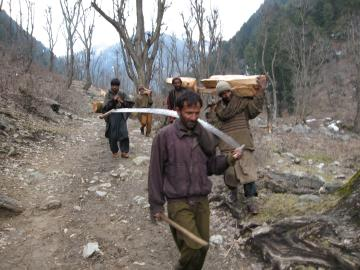 Loggers returning in the Himalayas