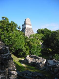 Temple above jungle in Tikal, Guatemala