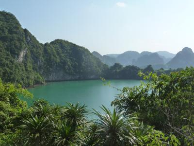 Halong Bay in the Gulf of Tonkin in the South China Sea